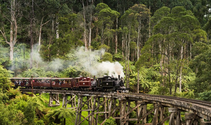 Puffing Billy Tour |…